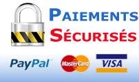 mode de paiement VISA - Mastercard - Paypal