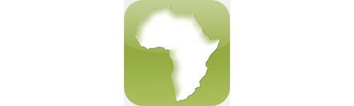 Kits solaires Afrique